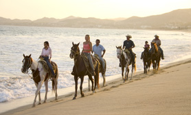 Horseback riding ixtapa