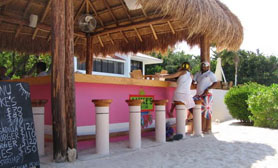 Ixtapa Beach Bar